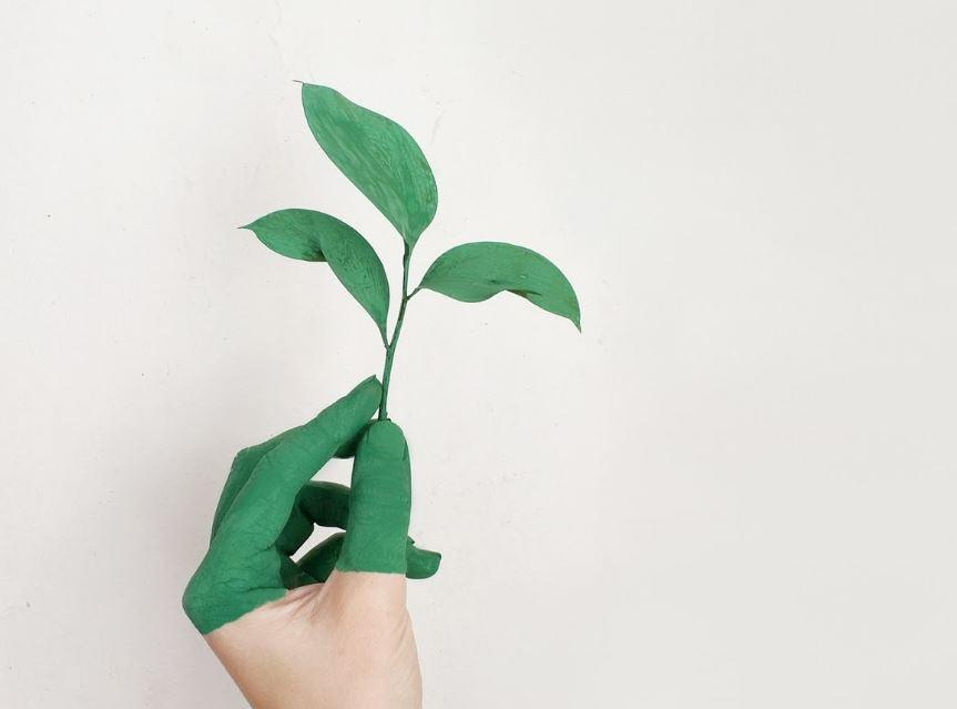 How Technology Is Helping Businesses Become Green
