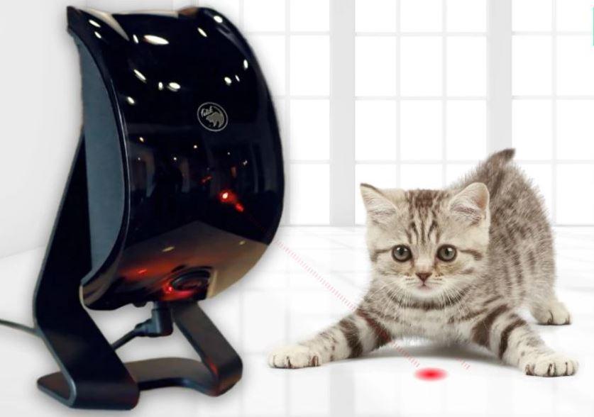 Felik   AI Powered Cool Pet Companion Entertains Your Pets
