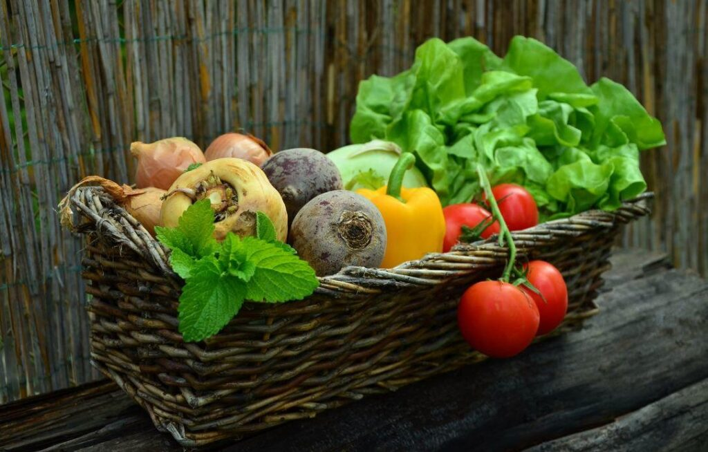 The Best Food Choices to Fight Cancer